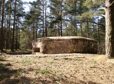 Мародёры уничтожают ДОТ №1 Латвийской армии