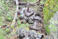 Около Нижнего Тагила найден транспортник Ли-2