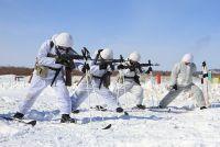 Финны проверят российскую мотострелковую бригаду