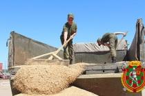 Помощь в проведении уборки урожая