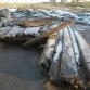 Остатки корабля в Даугавгриве