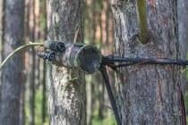 Навые польские противотанковые мины