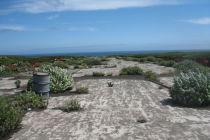 Вторая экспедиция прибыла на остров Матуа