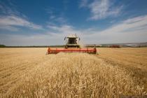 Армия Белоруси помогает в уборке урожая