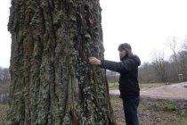 Столетние деревья — столетнему юбилею государства