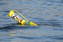 Подводные беспилотники соберут в «косяки»