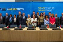 Страны НАТО будут совместно покупать боеприпасы